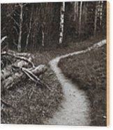 Skinny Trails Wood Print