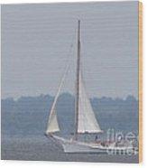 Skipjack On The Bay  Wood Print by Debbie Nester
