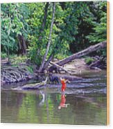 Skipping Stones Wood Print