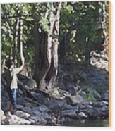 Skipping Stones Impressionist Fall Series #4  Wood Print by Sharon McLain