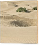 Skn 1408 The Smooth Dunes Wood Print