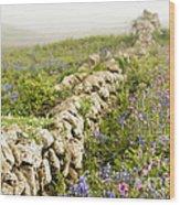 Skomer Wildflowers Wood Print