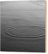 Skc 0211 Three Gradual Circles Wood Print