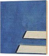 Skc 0304 Parallel Paths Wood Print
