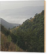 Skc 0763 Dry Green Landscape Wood Print