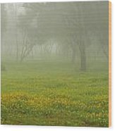 Skc 0835 Romance In The Meadows Wood Print