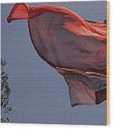 Skc 0958 Flying Saree Wood Print