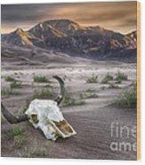 Skull In The Desert Wood Print
