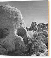 Skull Rock Wood Print