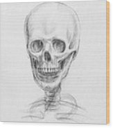 Skull Study Wood Print