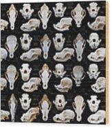 Skulls Of Various Dog Breeds Wood Print