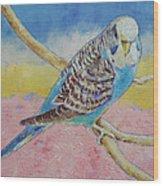 Sky Blue Budgie Wood Print