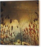 Autumn Lights Sky Colors  Wood Print