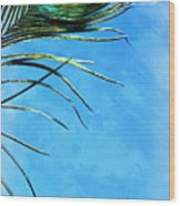 Sky Flight Wood Print