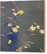 Sky Of Leaves Wood Print