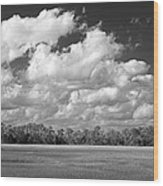 Sky Over St. Marks Wood Print