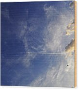 Sky Plane Bird From The Series The Imprint Of Man In Nature Wood Print