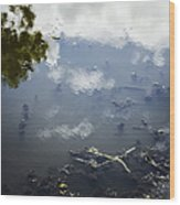 Sky Reflections Wood Print