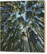 Sky Scrapers Wood Print
