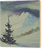 Sky Shadows And Spruce Wood Print