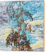 Sky Tree Wood Print