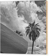 Sky-ward Palm Springs Wood Print by William Dey