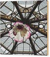 Skylight Blossom Wood Print