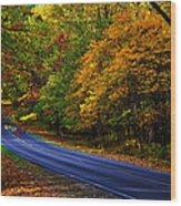 Skyline Drive 2 Wood Print