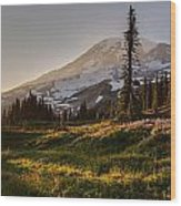 Skyline Meadows Sunstar Wood Print