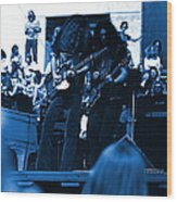 Skynyrd #5 Crop 1 In Blue Wood Print