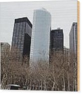 Skyscrapers Of The Battery Wood Print