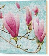 Skyward Magnolia Painterly 4 Wood Print