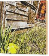 Slash Of Spring Wood Print