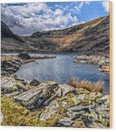 Slate Valley Wood Print