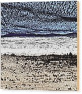 Sleeping Bear Beach Wood Print