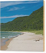 Sleeping Bear Dunes National Lakeshore Wood Print