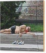 Sleeping Beauty On The High Line Wood Print