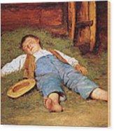 Sleeping Boy In The Hay Wood Print