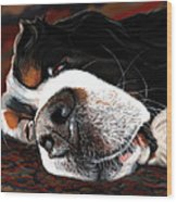 Sleeping Dogs Lie Wood Print
