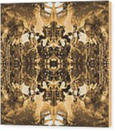 Sleeping Fairies 2 Wood Print