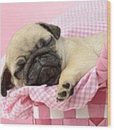 Sleeping Pug In Pink Basket Wood Print by Greg Cuddiford