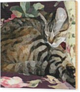 Sleeping Tabby Wood Print
