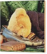 Sleeping Teddy Wood Print