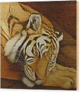 Sleeping Tiger Wood Print