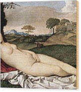 Sleeping Venus Wood Print