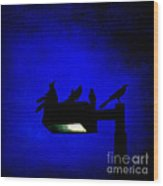 Sleepless At Midnight Wood Print