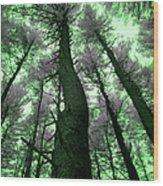 Sleepwalking Wood Print by Luke Moore