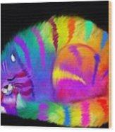 Sleepy Colorful Cat Wood Print