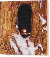 Sleepy Hollow Wood Print by Sharon Costa