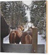 Sleigh Ride Dwn A Snowy Lane Wood Print